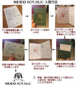 猫共和国に入国するためには、いくつかの手続を踏みパスポートを得る必要があります。