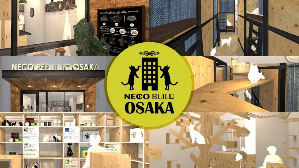 5階建て保護猫複合施設「ネコビル」を大阪心斎橋に作りたい!
